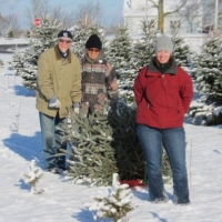 385903_2517465730546_1236935912_nCustomers cutting a Christmas Tree @ Bear Dance Farm 2011.jpg